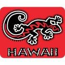 Hawaiian Gecko Car Window Decal Bumper Sticker