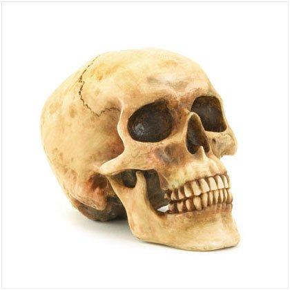 Grinning Skull Sculpture