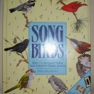 Song Birds, 1988 HCDJ, Birds, Birdwatching,