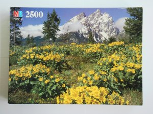 2500 piece Jigsaw Puzzle of floral mountain scenery with 3 pieces missing toy game