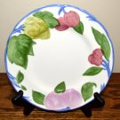 Franciscan Orchard Glade Salad Plate England