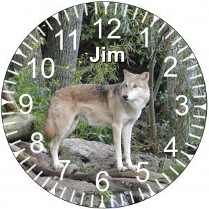 "9"" Personalized Wolf Clock ~ Wildlife"