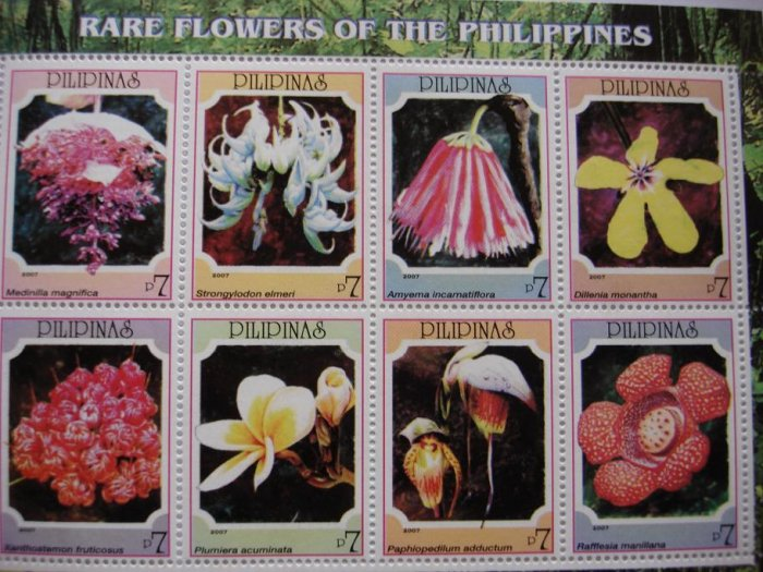 Rare Flowers of the Philippines M/S