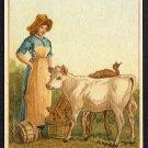 Victorian Trade Card - Arbuckle Brothers Coffee Company - Farm Woman Feeding Calves (#95)