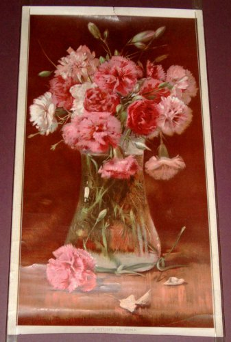 """1900/01 Arbuckle Bros. Coffee Co. Premium """"A Study In Pink"""" HARRY ROSELAND Print"""