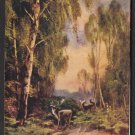 "1909 Artistic Post Card - ""A FOREST GLADE"""