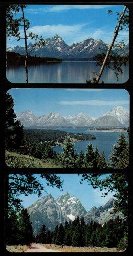 TETON NATIONAL PARK - Jackson Hole, Wyoming - 3 Vintage Scenic Postcards, Unused