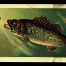 1889 Victorian Trade Card - Arbuckle Brothers Coffee Company - BLACK BASS (#42)