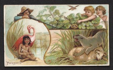 1893 Victorian Trade Card - Arbuckle Brothers Coffee Company - PATAGONIA (#28)