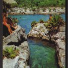 XEL-HA LAGOON, Quintana Roo, Mexico - 1980s Scenic Postcard - Unused