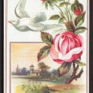 LION COFFEE Victorian Trade Card - Woolson Spice - red roses, white dove, church