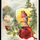 LION COFFEE Victorian Trade Card - Woolson Spice - red roses, robin, snowy pines
