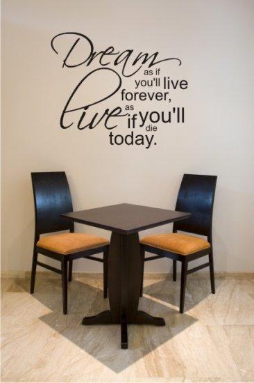 "vinyl wall art decal sticker - dream quote (20""x24"")"