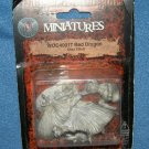 WOC Red Dragon Silver Anniversary WOC40017 AD&D dungeons MOC