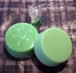 Enchanted Potions Citrus and Tea Tree Cleansing Bar