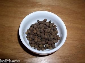 Allspice,Whole, Organic Herbs & Spices, 1 Ounce