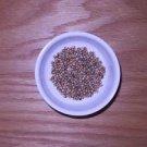 Coriander,Whole, Organic Herbs & Spices, 1 Ounce