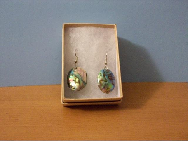 Natural Abalone Shell Mop Pierced Earrings