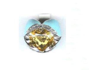 AN0041 ring