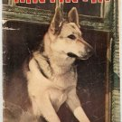 Rin Tin Tin (1953) #5 Dell Comics 1953 Fair