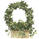 Ivy wreath topiary