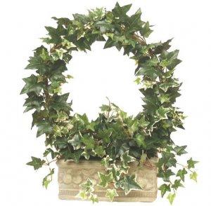 Ivy wreath topiary