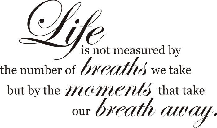 Life Is Not Measured Decal Sticker Wall Vinyl Quote Beautiful Words