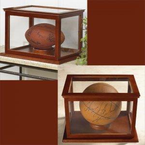 Football or Basketball Collectible Display Case