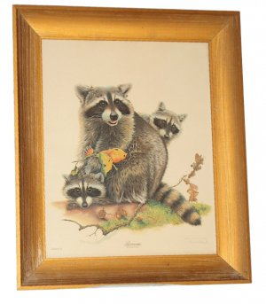 "Jim Oliver wildlife print ""Raccoons"""