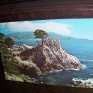 Midway Point Mile Drive Monterey Peninsula California Curteich Color J-9 Western Publishing Postcard