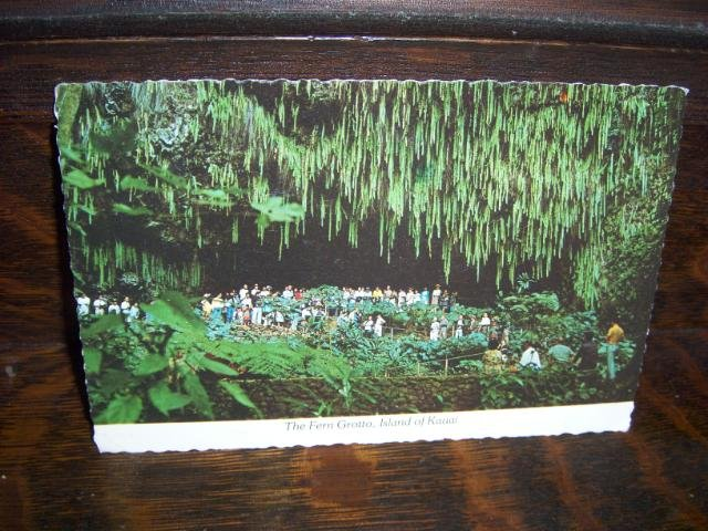 Fern Grotto Garden Island Kauai Hawaii Wailua River 1980 Don Ceppi Photo Postcard