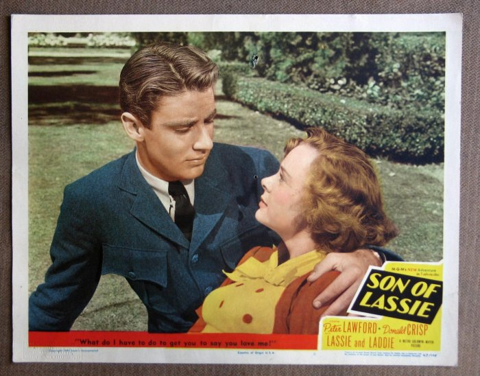 CC39 Son Of Lassie PETER LAWFORD and JUNE LOCKHART 1949 LC
