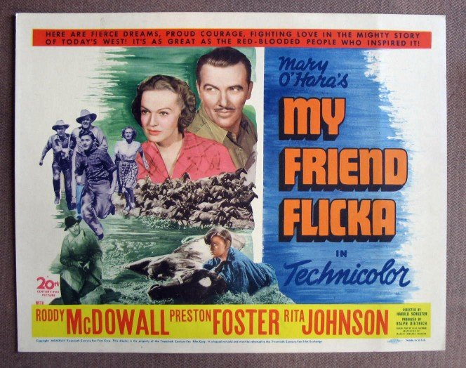 CO28 MY Friend Flicka RODDY McDOWALL Original 1943 Title Card