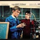 CLAMBAKE (1967) Elvis Presley 8X10 inch ORIGINAL color studio still CBK36