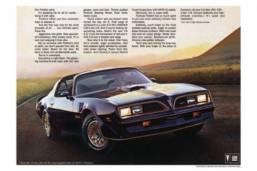 "1977 Pontiac Firebird Brochure Centerfold Ad Digitized & Re-mastered Print  24"" x 36"""