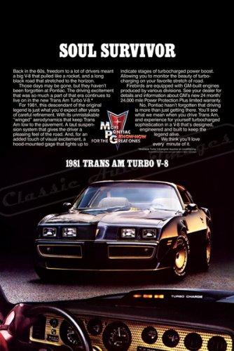 "1981 Pontiac Firebird TransAm Ad Digitized & Re-mastered Print ""Soul Survivor""  24"" x 36"""