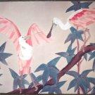 Dan Goad Rosette Spoon Bills Signed #'ed Art Print
