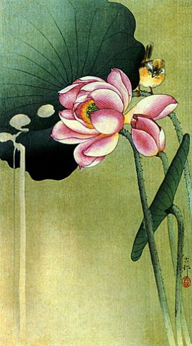 """Songbird and Lotus"" BIG Japanese Art Print by Koson"