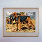 """Bloodhounds"" by Louis Agassiz Fuertes"