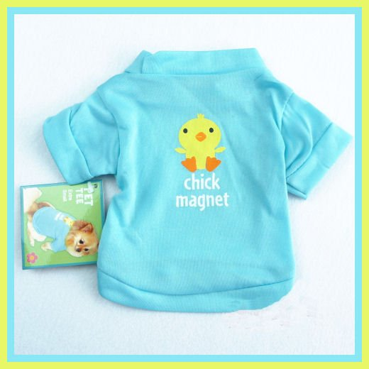 Dog Shirt Aqua Chick Magnet Size XS