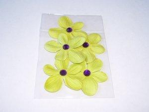 Daisy 5 � Petite Limes - Green