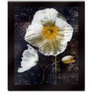 Poppies II by John Seba Mounted Laminated Wall Art 26 x 30
