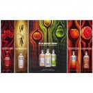 IN AN ABSOLUT WORLD Vodka Spectacular Magazine Ad TRUE TASTE COMES NATURALLY – 7 FLAVORS