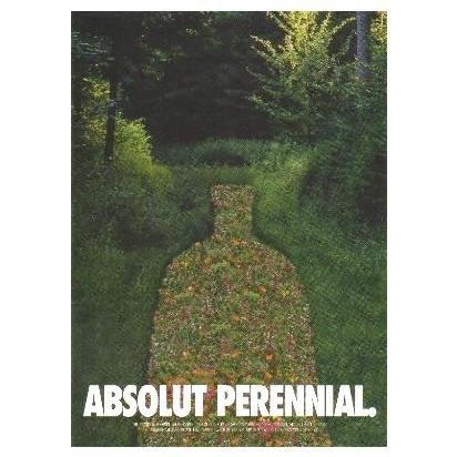 ABSOLUT PERENNIAL Canadian Vodka Magazine Ad RARE!