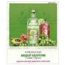 ABSOLUT GRAPEVINE Vodka Magazine Product Launch Ad VERSION 1 - RARE!