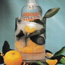 ABSOLUT COOL & ABSOLUT INSTRUCTIONS French Canadian Vodka Magazine Ads 2pp RARE!