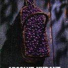 ABSOLUT KURANT Vodka Magazine Ad BASKET OF CURRANTS