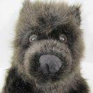 Chocolate Brown Plush Bear 030915