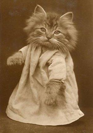"Cross Stitch Pattern Chart on Printable PDF ""Cat"" Vintage Postcard"