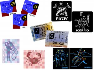Any ZODIAC Astrological Birth Sign Fridge Gift MAGNET